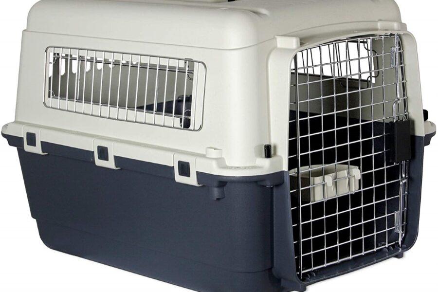 trasportino rigido per cucciolo di cane