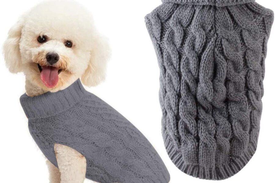 cane con maglione intrecciato