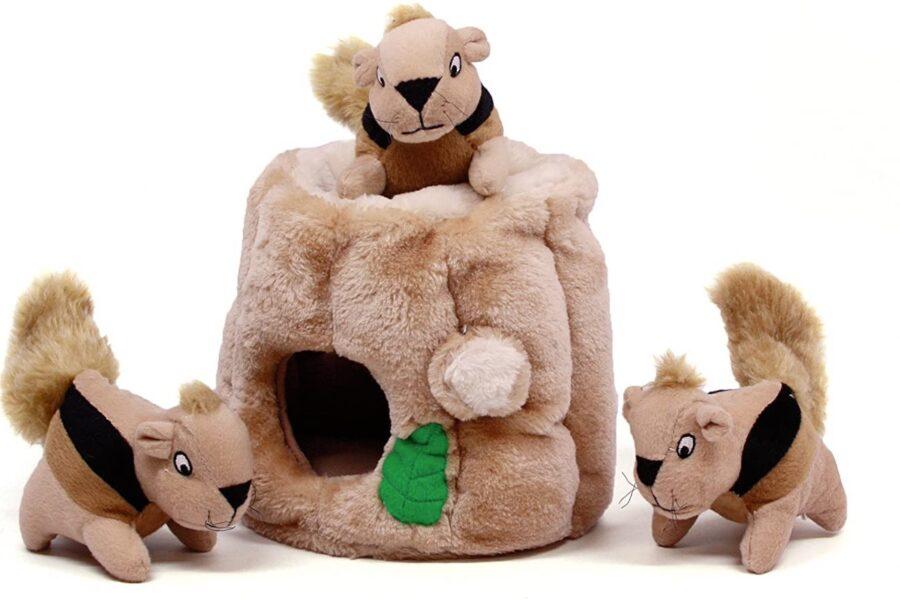scoiattoli di peluche per cani