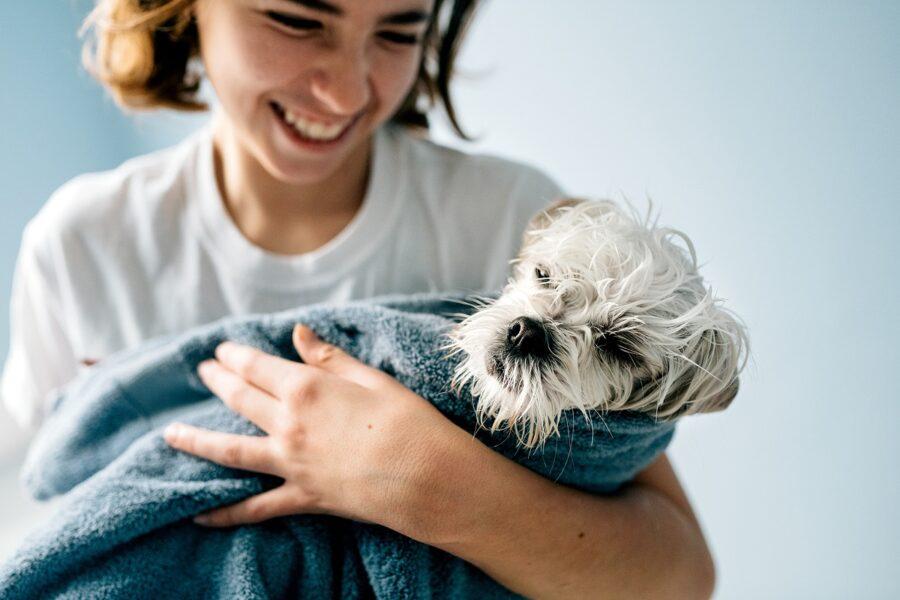 cane tenuto in braccio