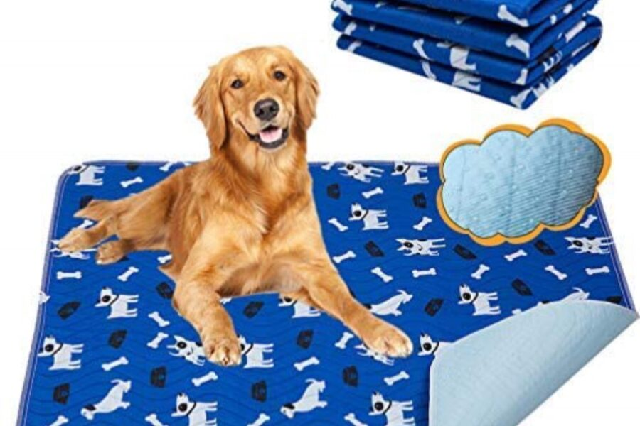 tappetino igienico per cani