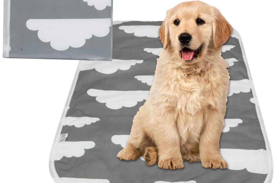 tappetino per cuccioli di cane