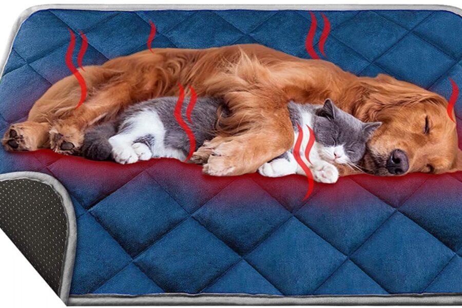 tappetino per cani che si riscalda da solo