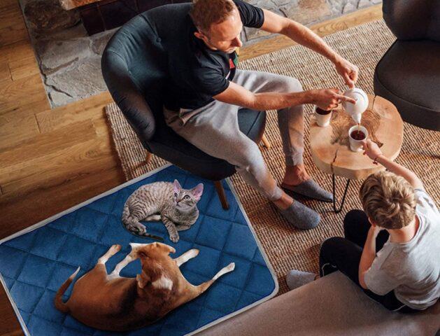 tappetino riscaldante per cane