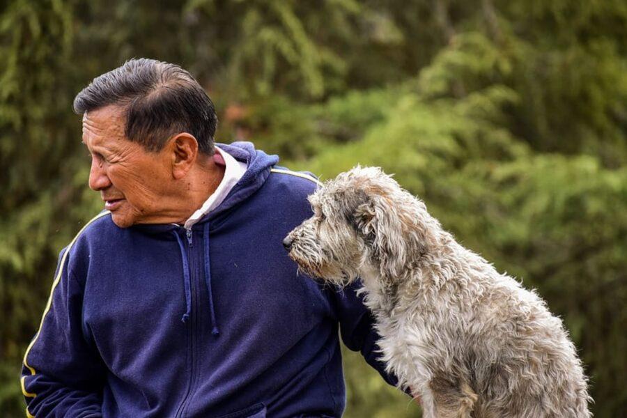 cucciolo con papà