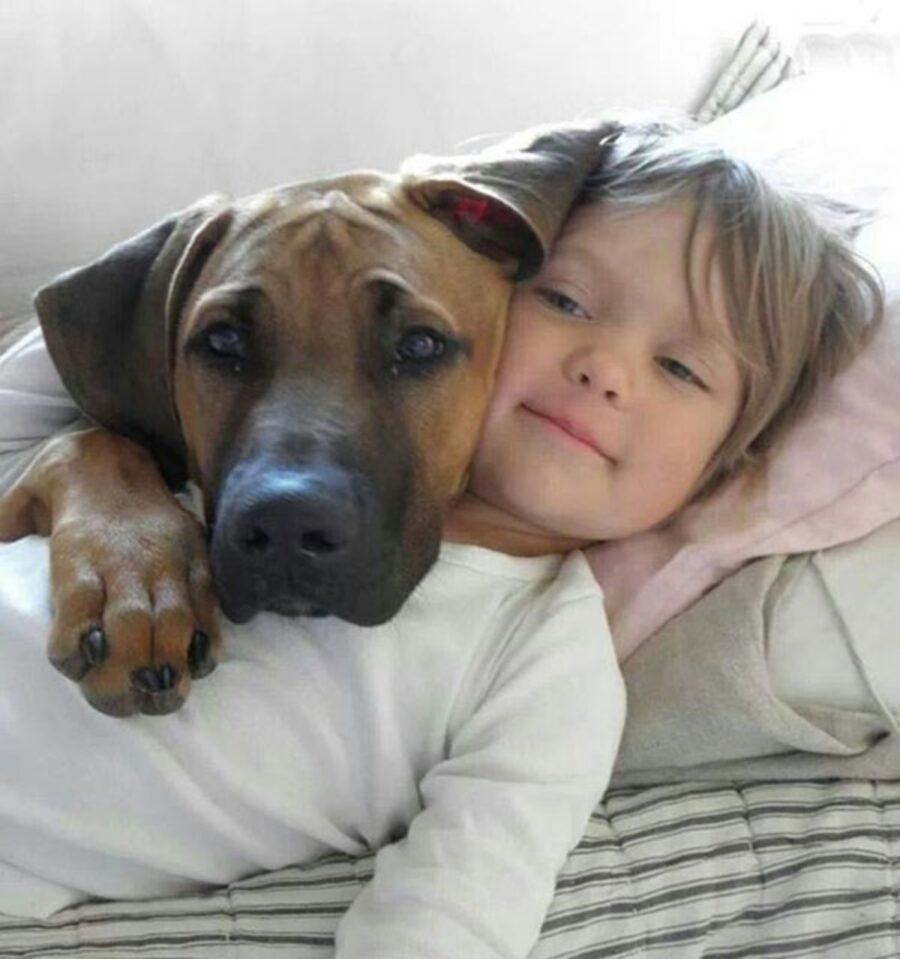 cucciolo con bimbo