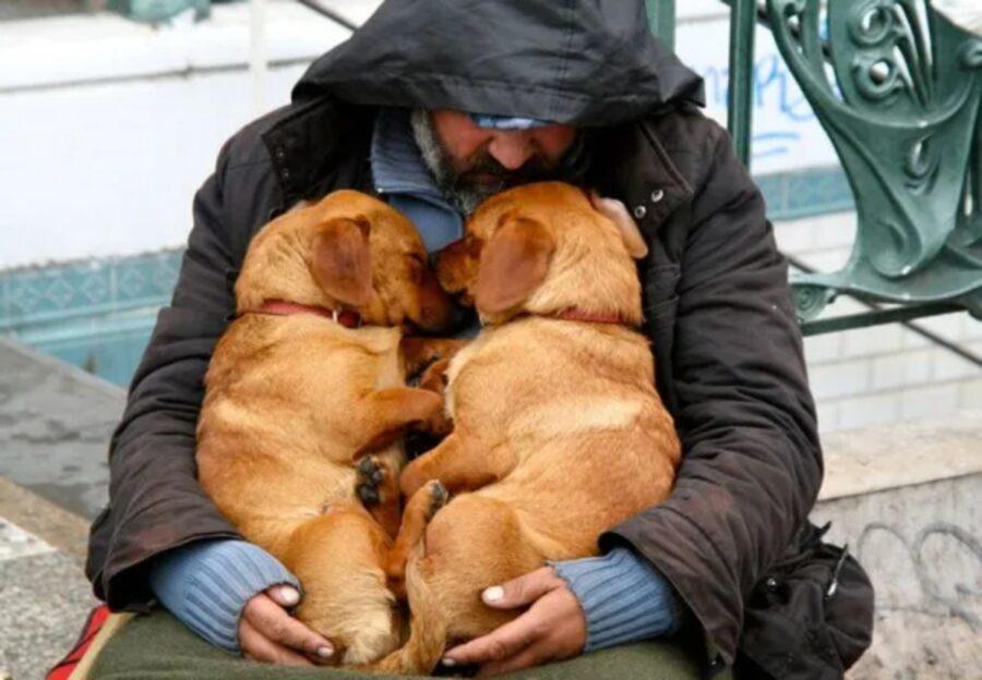 cani con papà