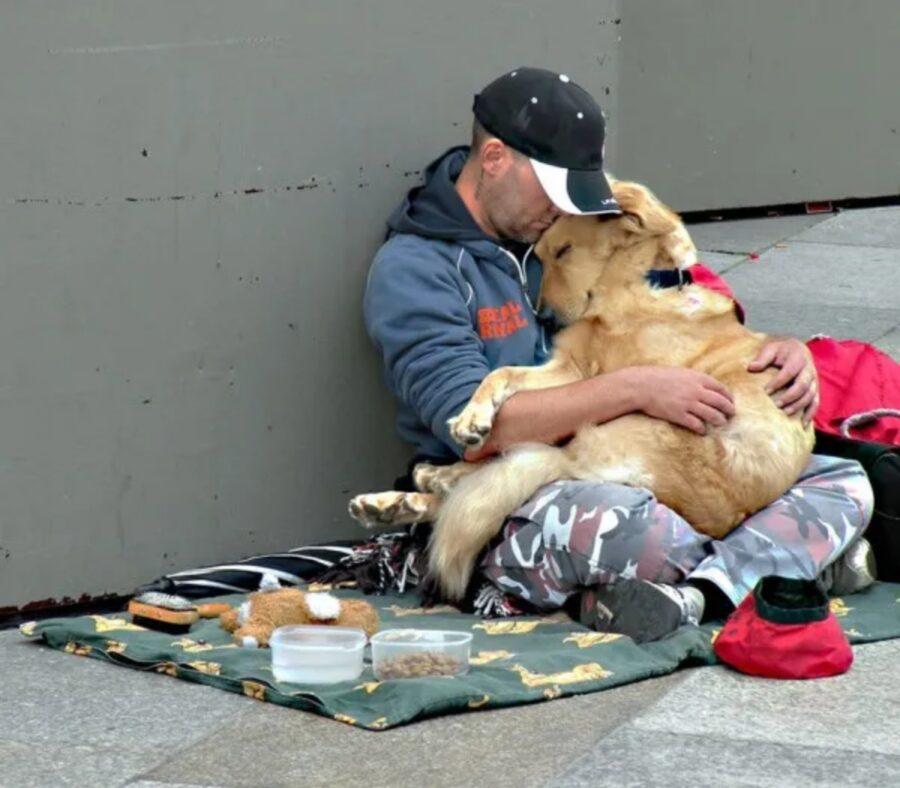 abbraccio affettuoso cane