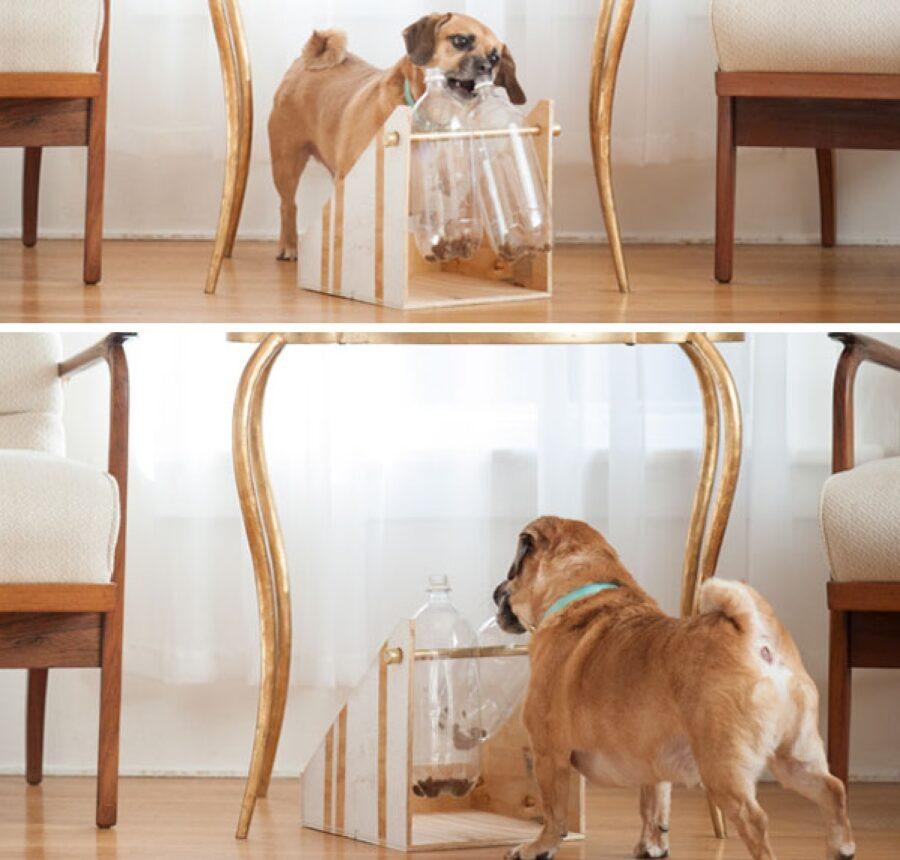 cane sistema per stoccaggio croccantini