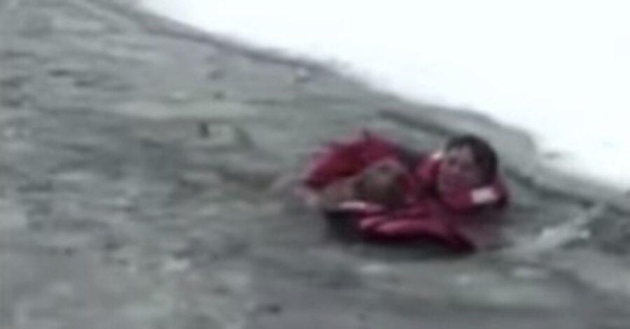 pompieri salvano un cane in un lago ghiacciato