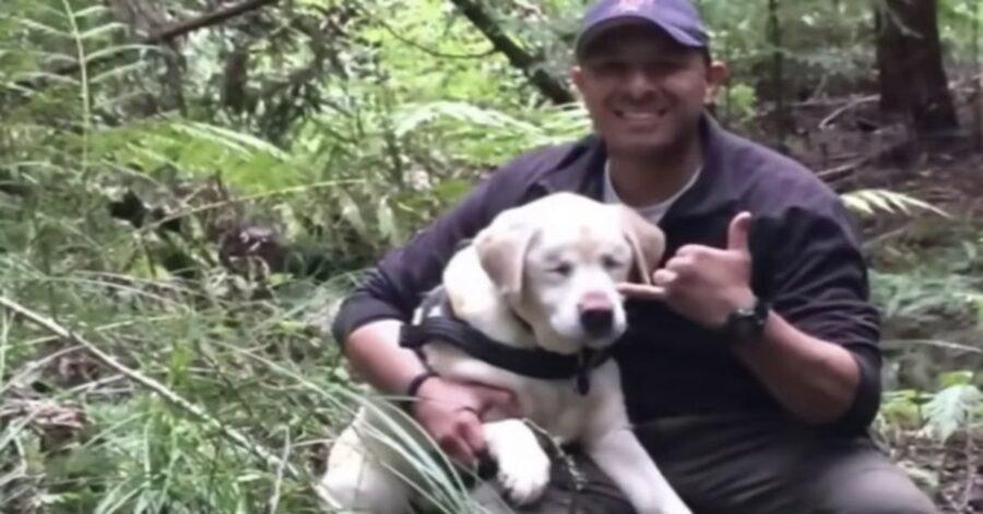 Pompiere ritrova un Labrador perso nel bosco