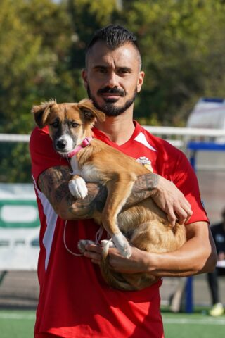lentigione calcio con cani