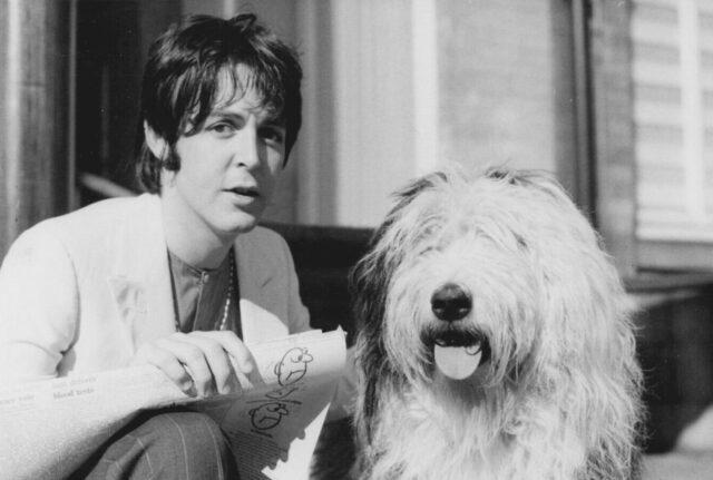 cane e padrone in bianco e nero