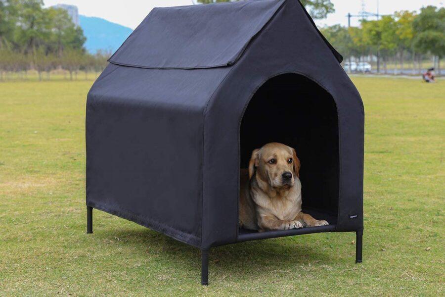 cuccia sopraelevata per cane