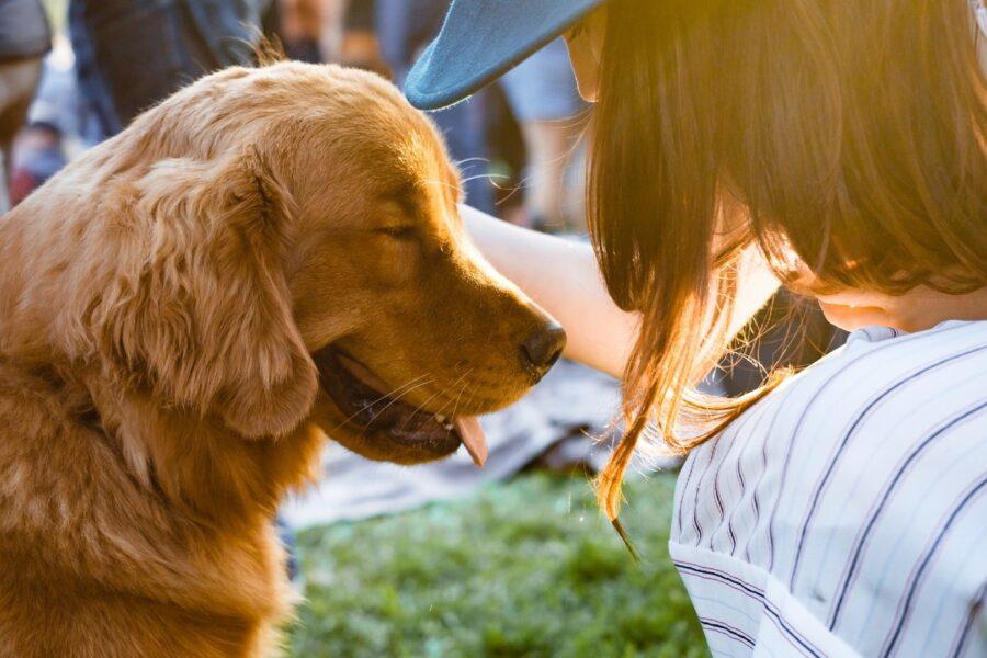 cane e proprietaria