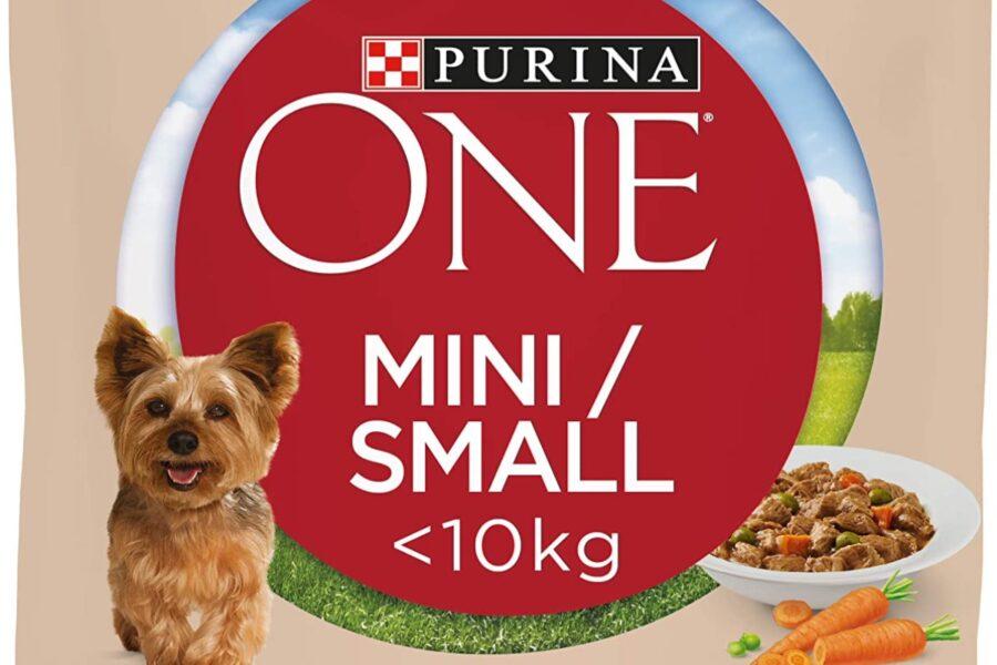 cibo in salsa per cani