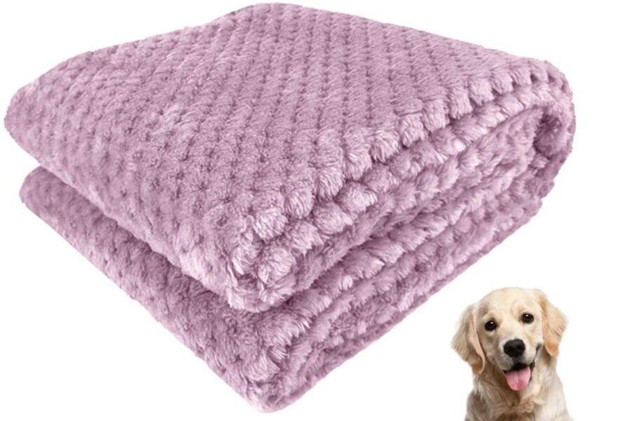 coperta per il cane