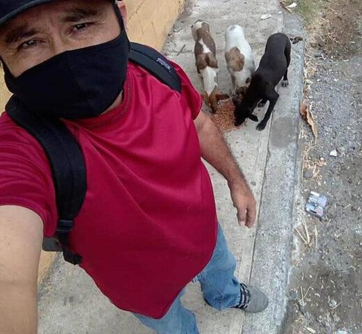 uomo con cani randagi